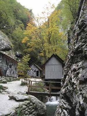 Slovenia-Franja