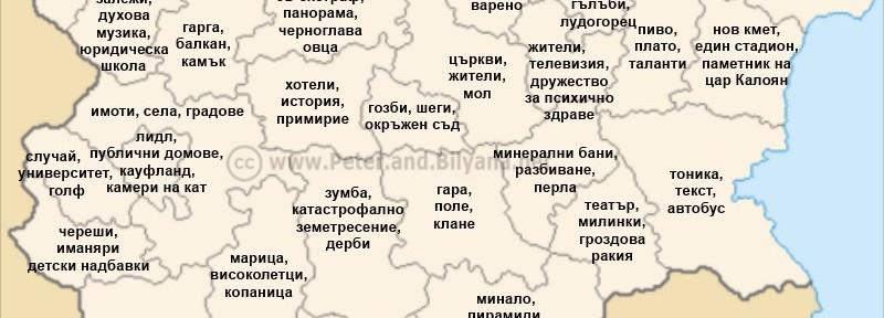 Къде какво се търси в България с Google
