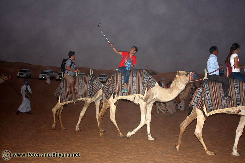 desert-safari-people-camels