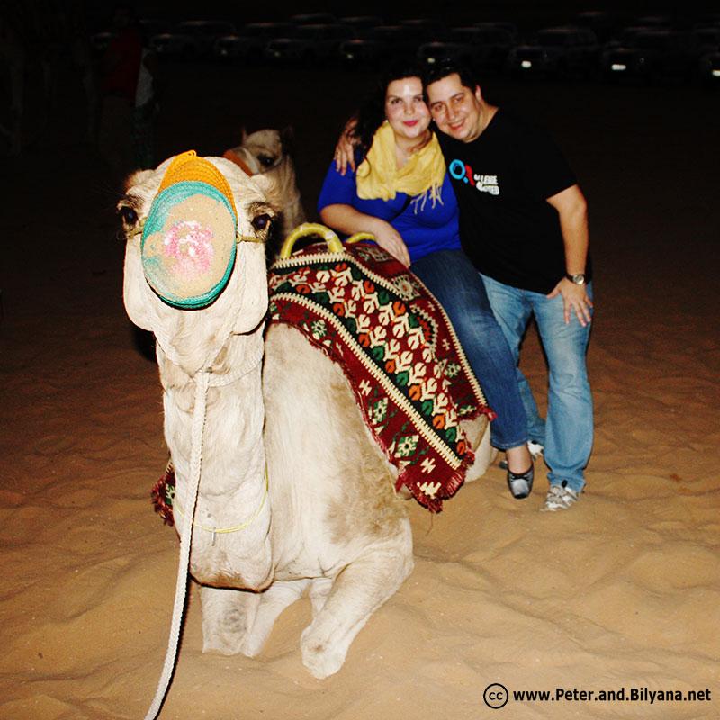peter-bilyana-camels-2