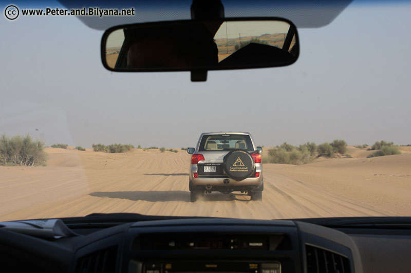 safari-desert-road