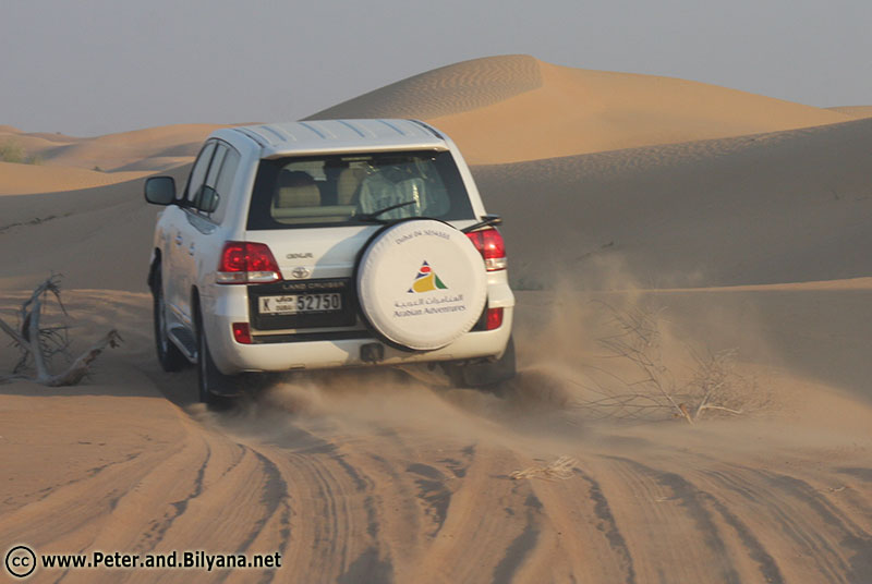 safari-high-speed-desert-road