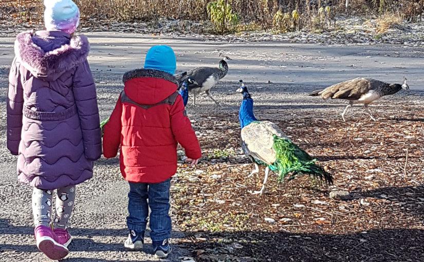 На екскурзия с деца: 12 съвета за по-приятно прекарване